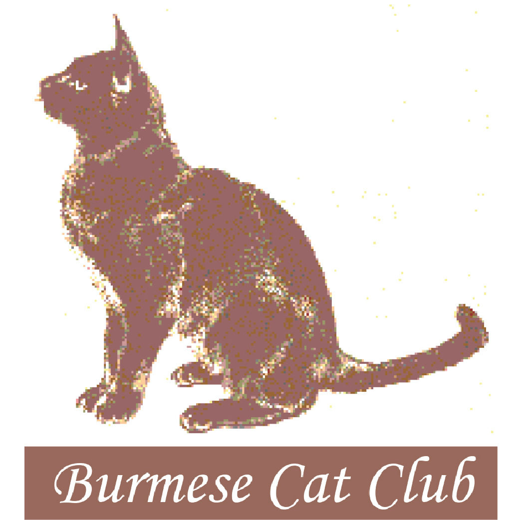 Burmese Cat Club