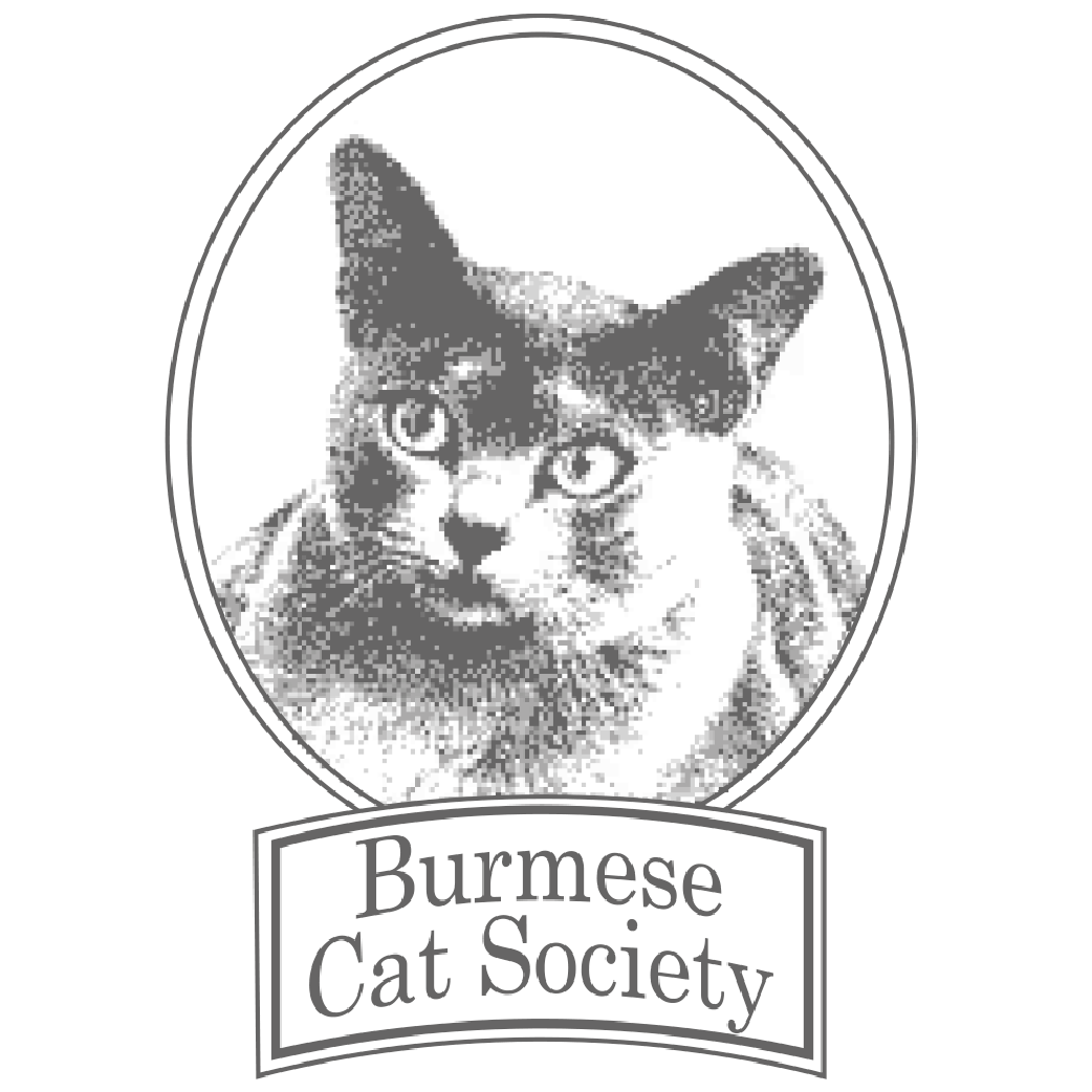 Burmese Cat Society